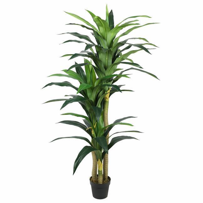 Dracena -keinotekoinen puu 180 cm