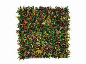 Keinokukkapaneeli Leucadendron - 50x50 cm