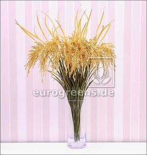 Keinotekoinen haara Riisi kylvetään 75 cm
