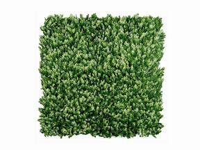 Keinotekoinen havupaneeli Cypruštek tujovitý - 50x50 cm