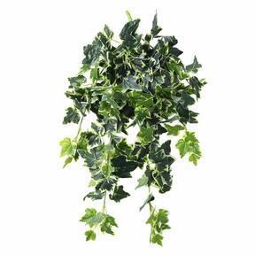Keinotekoinen jänne Ivy valko-vihreä 80 cm