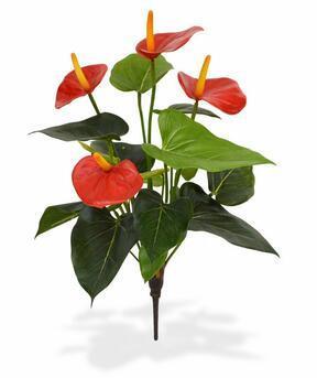 Keinotekoinen kasvi Anthurium red 40 cm