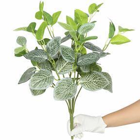 Keinotekoinen kasvi Fitónia valkoinen 45 cm