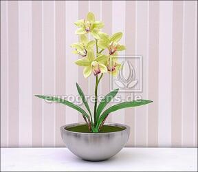 Keinotekoinen kasvi Orchidea Cymbidium vaaleanvihreä 50 cm