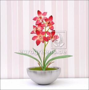 Keinotekoinen kasvi Orchidea Cymbidium viininpunainen 50 cm