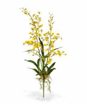 Keinotekoinen kasvi Orchidea Oncídium 80 cm