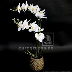 Keinotekoinen kasvi Orkidea valkoinen 65 cm