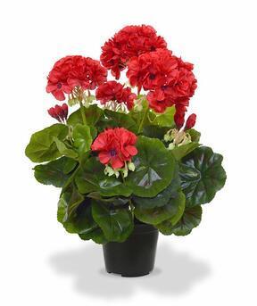 Keinotekoinen kasvi Pakost punainen 40 cm