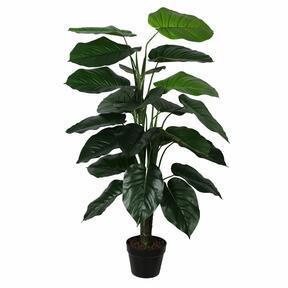 Keinotekoinen kasvi Valokuvat 120 cm