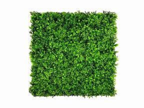Keinotekoinen lehtilevy Stonecrop - 50x50 cm