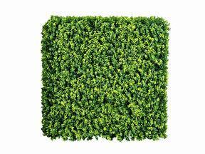 Keinotekoinen lehtipuulevy Buxus - 50x50 cm