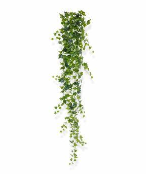 Keinotekoinen lonkero Ivy 190 cm