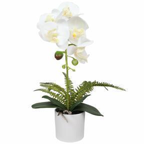 Keinotekoinen orkidea valkoinen, saniainen 37 cm