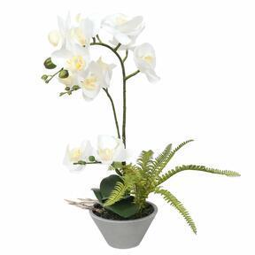 Keinotekoinen orkidea valkoinen, saniainen 43 cm