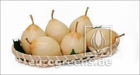 Keinotekoinen päärynä Nashi