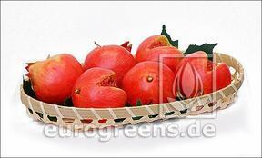 Keinotekoinen punainen granaattiomena