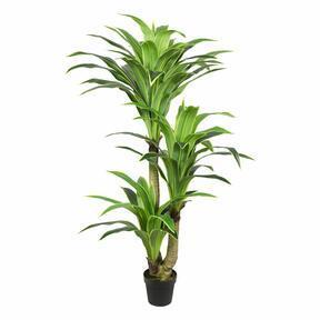 Keinotekoinen puu Dracena 160 cm