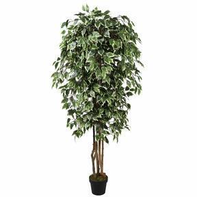 Keinotekoinen puu Fikus Benjamin vihreä valkoinen 170 cm