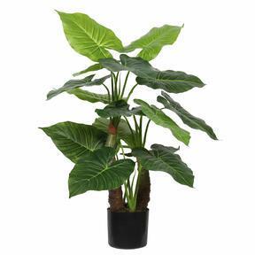 Keinotekoinen puu Taro Araceae 80 cm