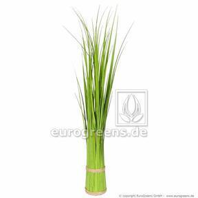 Keinotekoinen ruohonippu Yleinen ruoko 45 cm