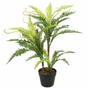 Keinotekoinen saniainen kasvi 70 cm