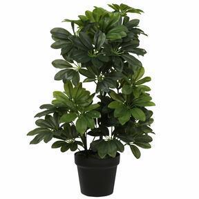 Keinotekoinen Shefler -kasvi 60 cm
