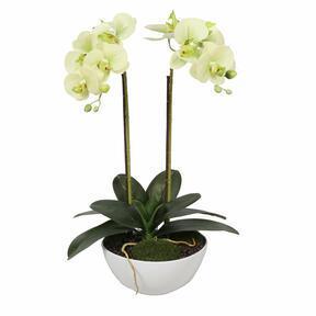 Keinotekoinen voin orkidea 50 cm