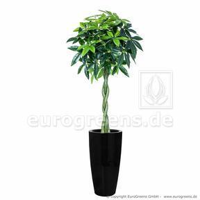 Pachiran keinotekoinen puu 150 cm