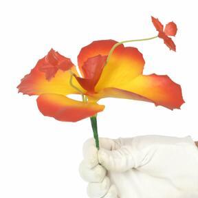 Perhonen kukka 20 cm