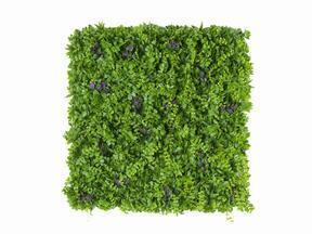 Tekokukkapaneeli Pennywort - 50x50 cm